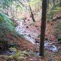 Montseny guilleries 21 thumb r